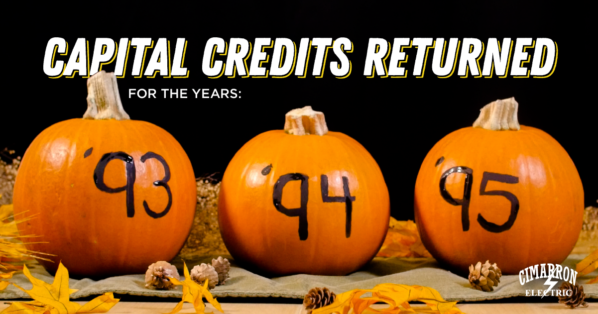 Capital Credits returned for the years 1993-1995